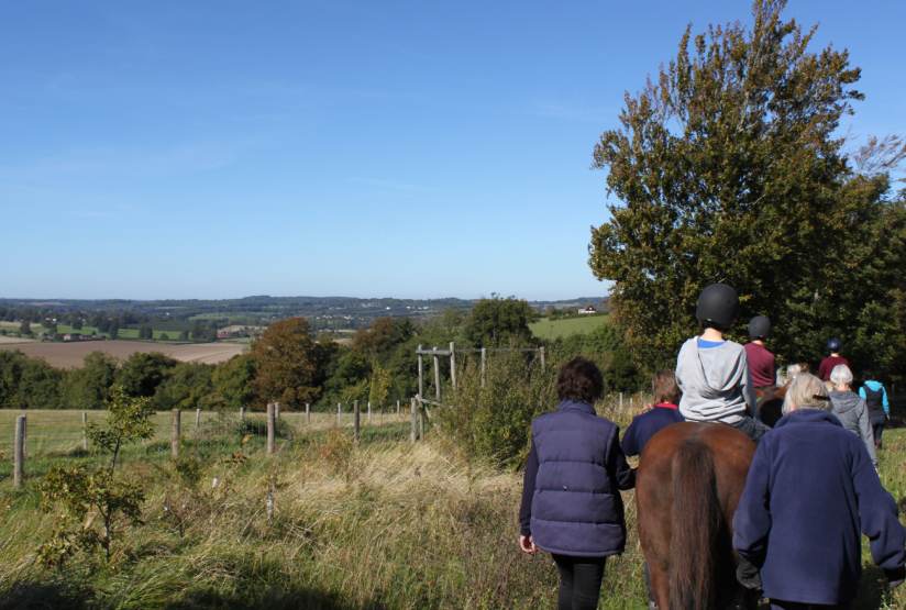 Pupils out for the day horse riding